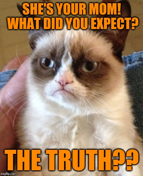 Grumpy Cat Meme | SHE'S YOUR MOM! WHAT DID YOU EXPECT? THE TRUTH?? | image tagged in memes,grumpy cat | made w/ Imgflip meme maker