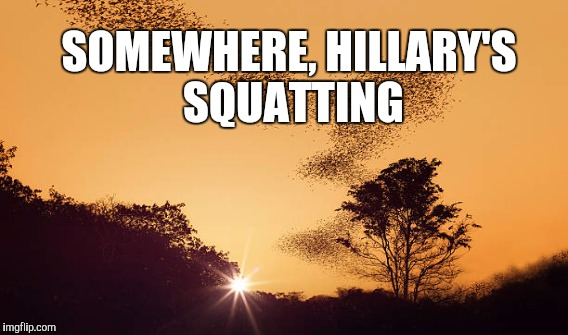 Somewhere, HILLARY Clinton is squatting | SOMEWHERE, HILLARY'S SQUATTING | image tagged in funny,funny memes,memes,gifs | made w/ Imgflip meme maker