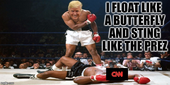 I FLOAT LIKE A BUTTERFLY AND STING LIKE THE PREZ | image tagged in donald trump,cnn,fake news,knockout punch | made w/ Imgflip meme maker