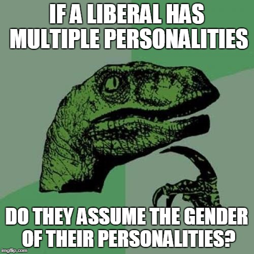 Philosoraptor Meme | IF A LIBERAL HAS MULTIPLE PERSONALITIES DO THEY ASSUME THE GENDER OF THEIR PERSONALITIES? | image tagged in memes,philosoraptor | made w/ Imgflip meme maker