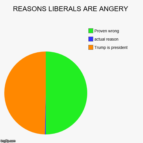REASONS LIBERALS ARE ANGERY | Trump is president, actual reason, Proven wrong | image tagged in funny,pie charts | made w/ Imgflip chart maker