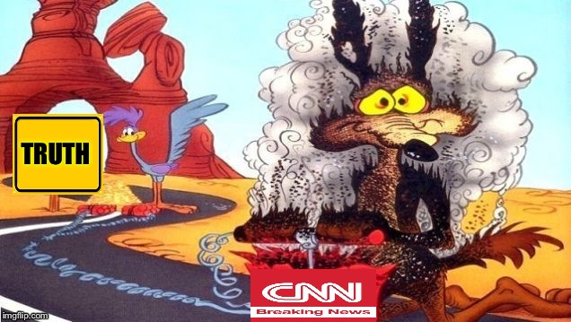 wile e coyote | TRUTH | image tagged in wile e coyote | made w/ Imgflip meme maker