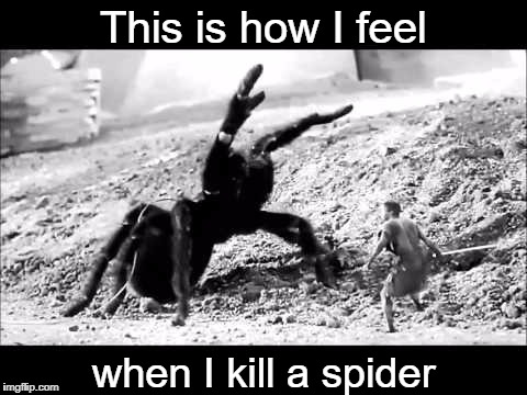 Anyone else feel this way? | This is how I feel when I kill a spider | image tagged in spiders,spiders hell no,the incredible shrinking man,memes | made w/ Imgflip meme maker