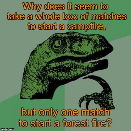 Philosoraptor Meme | Why does it seem to take a whole box of matches to start a campfire, but only one match to start a forest fire? | image tagged in memes,philosoraptor | made w/ Imgflip meme maker