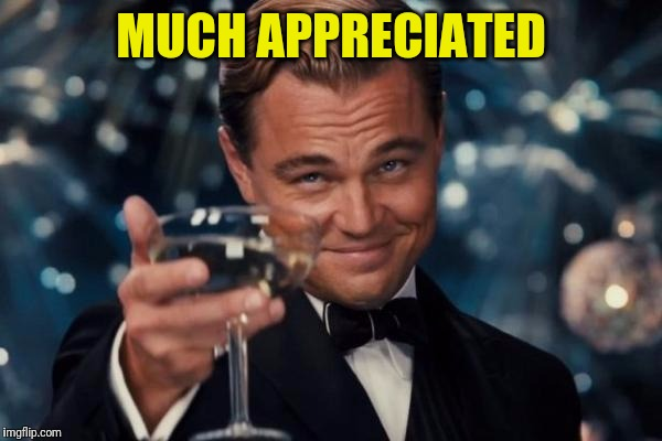 Leonardo Dicaprio Cheers Meme | MUCH APPRECIATED | image tagged in memes,leonardo dicaprio cheers | made w/ Imgflip meme maker