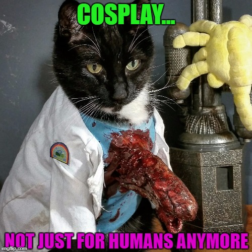 Kitty cat is not amused!!! | COSPLAY... NOT JUST FOR HUMANS ANYMORE | image tagged in cosplay,memes,cats,alien,funny,animals | made w/ Imgflip meme maker