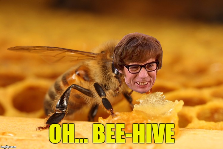 OH... BEE-HIVE | made w/ Imgflip meme maker