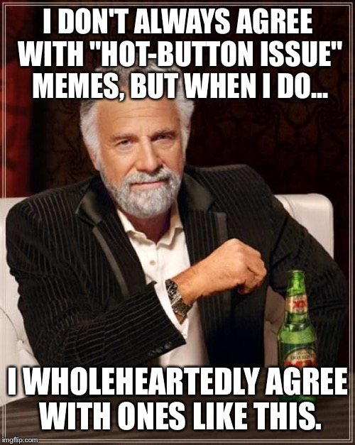"The Most Interesting Man In The World Meme | I DON'T ALWAYS AGREE WITH ""HOT-BUTTON ISSUE"" MEMES, BUT WHEN I DO... I WHOLEHEARTEDLY AGREE WITH ONES LIKE THIS. 