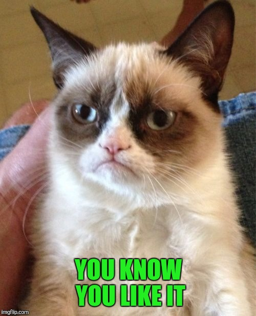 Grumpy Cat Meme | YOU KNOW YOU LIKE IT | image tagged in memes,grumpy cat | made w/ Imgflip meme maker