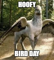 HOOFY BIRD DAY | image tagged in happy birthday,birthday,hippogriff,happybirthday,birthdays,birthday wishes | made w/ Imgflip meme maker
