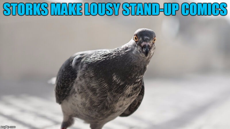 STORKS MAKE LOUSY STAND-UP COMICS | made w/ Imgflip meme maker