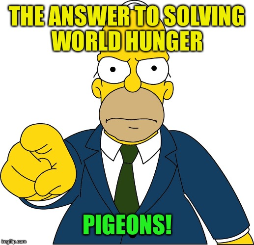 THE ANSWER TO SOLVING WORLD HUNGER PIGEONS! | made w/ Imgflip meme maker