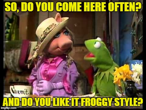 SO, DO YOU COME HERE OFTEN? AND DO YOU LIKE IT FROGGY STYLE? | made w/ Imgflip meme maker