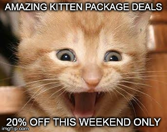 Excited Cat | AMAZING KITTEN PACKAGE DEALS 20% OFF THIS WEEKEND ONLY | image tagged in memes,excited cat | made w/ Imgflip meme maker