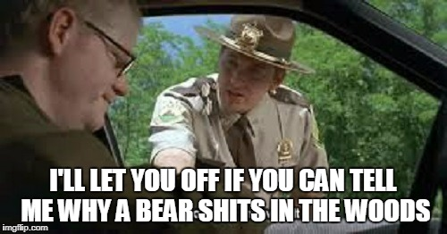 I'LL LET YOU OFF IF YOU CAN TELL ME WHY A BEAR SHITS IN THE WOODS | made w/ Imgflip meme maker