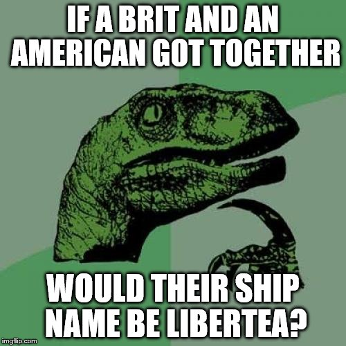 Philosoraptor Meme | IF A BRIT AND AN AMERICAN GOT TOGETHER WOULD THEIR SHIP NAME BE LIBERTEA? | image tagged in memes,philosoraptor | made w/ Imgflip meme maker