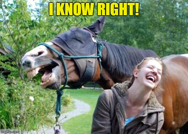 Laughing Horse | I KNOW RIGHT! | image tagged in laughing horse | made w/ Imgflip meme maker