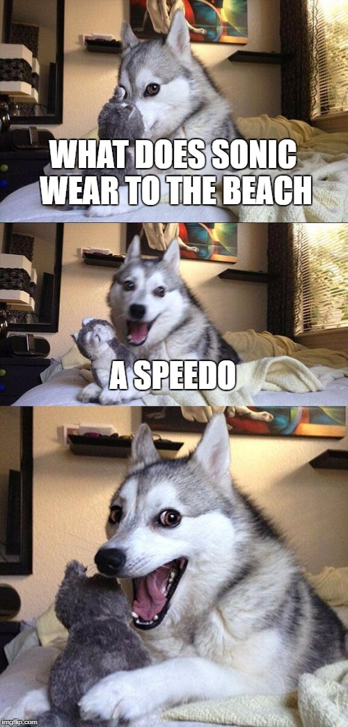 Bad Pun Dog Meme | WHAT DOES SONIC WEAR TO THE BEACH A SPEEDO | image tagged in memes,bad pun dog | made w/ Imgflip meme maker