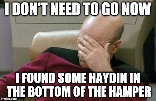 Captain Picard Facepalm Meme | I DON'T NEED TO GO NOW I FOUND SOME HAYDIN IN THE BOTTOM OF THE HAMPER | image tagged in memes,captain picard facepalm | made w/ Imgflip meme maker