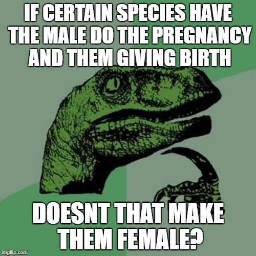 Philosoraptor Meme | IF CERTAIN SPECIES HAVE THE MALE DO THE PREGNANCY AND THEM GIVING BIRTH DOESNT THAT MAKE THEM FEMALE? | image tagged in memes,philosoraptor | made w/ Imgflip meme maker