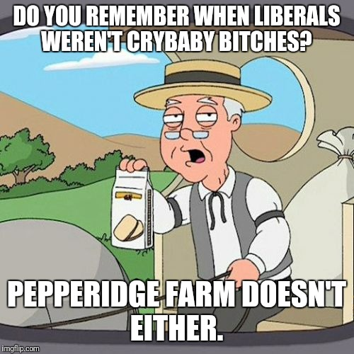 Pepperidge Farm Remembers Meme | DO YOU REMEMBER WHEN LIBERALS WEREN'T CRYBABY B**CHES? PEPPERIDGE FARM DOESN'T EITHER. | image tagged in memes,pepperidge farm remembers,funny memes | made w/ Imgflip meme maker