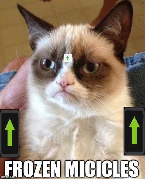 Grumpy Cat Meme | FROZEN MICICLES | image tagged in memes,grumpy cat | made w/ Imgflip meme maker