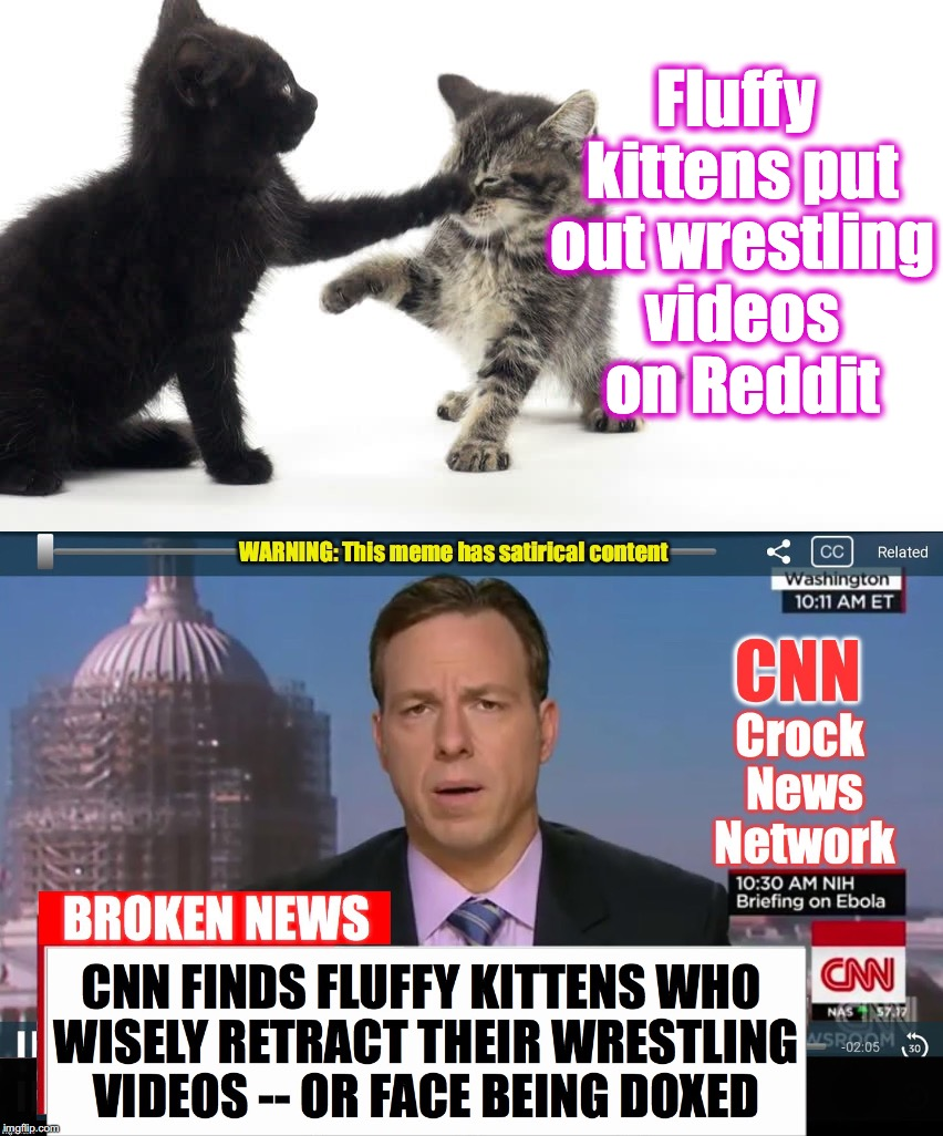 Let this be a lesson to fluffy kittens everywhere: don't mess with CNN... They have ways of making you scat! | Fluffy kittens put out wrestling videos on Reddit | image tagged in cnn broken news | made w/ Imgflip meme maker