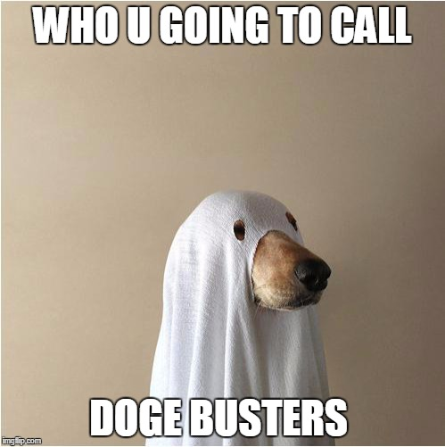 Ghost Doge | WHO U GOING TO CALL DOGE BUSTERS | image tagged in ghost doge | made w/ Imgflip meme maker