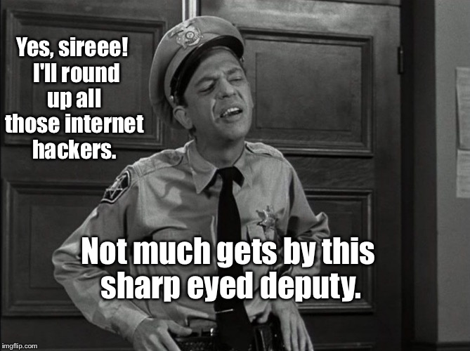 Yes, sireee!  I'll round up all those internet hackers. Not much gets by this sharp eyed deputy. | image tagged in memes,deputy barney fife,internet,hackers | made w/ Imgflip meme maker