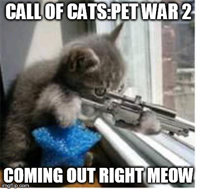 cats with guns | CALL OF CATS:PET WAR 2 COMING OUT RIGHT MEOW | image tagged in cats with guns | made w/ Imgflip meme maker