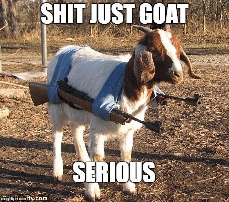 SHIT JUST GOAT SERIOUS | image tagged in goat with guns | made w/ Imgflip meme maker