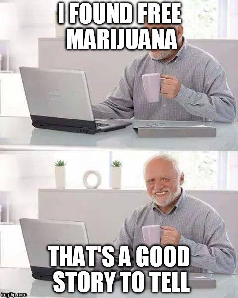 Hide the Pain Harold Meme | I FOUND FREE MARIJUANA THAT'S A GOOD STORY TO TELL | image tagged in memes,hide the pain harold | made w/ Imgflip meme maker