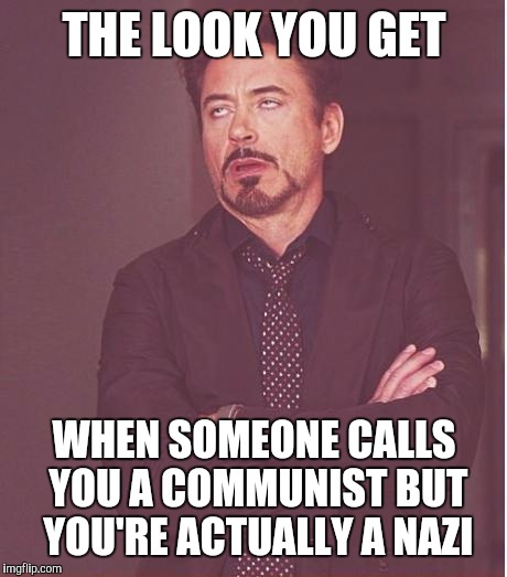 Face You Make Robert Downey Jr Meme | THE LOOK YOU GET WHEN SOMEONE CALLS YOU A COMMUNIST BUT YOU'RE ACTUALLY A NAZI | image tagged in memes,face you make robert downey jr | made w/ Imgflip meme maker