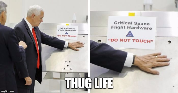 Honey Badger Pence | THUG LIFE | image tagged in mike pence,disgrace | made w/ Imgflip meme maker