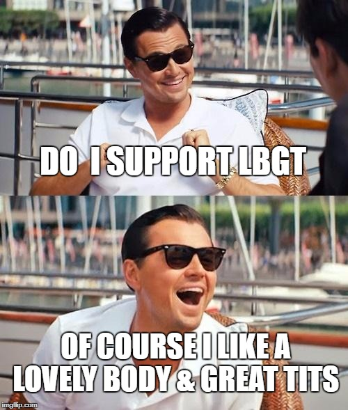 Leonardo Dicaprio Wolf Of Wall Street Meme | DO  I SUPPORT LBGT OF COURSE I LIKE A LOVELY BODY & GREAT TITS | image tagged in memes,leonardo dicaprio wolf of wall street | made w/ Imgflip meme maker