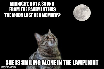 MIDNIGHT, NOT A SOUND FROM THE PAVEMENT HAS THE MOON LOST HER MEMORY? SHE IS SMILING ALONE IN THE LAMPLIGHT | made w/ Imgflip meme maker