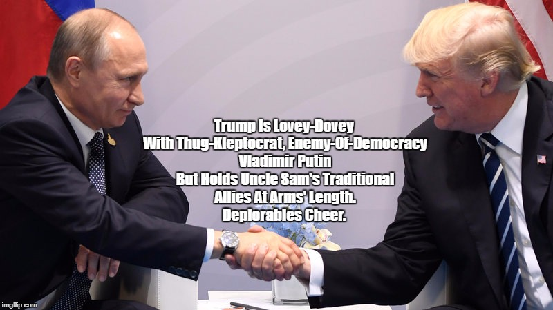 """Trump Is All Smiles WIth Putin But Frosty With America's Traditional Allies"" 