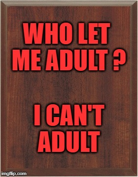 Adulting | WHO LET ME ADULT ? I CAN'T ADULT | image tagged in bad idea | made w/ Imgflip meme maker