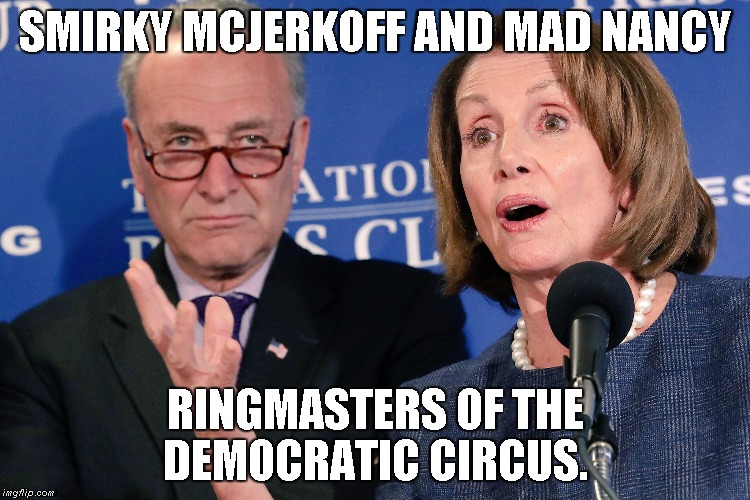 Democratic circus | SMIRKY MCJERKOFF AND MAD NANCY RINGMASTERS OF THE DEMOCRATIC CIRCUS. | image tagged in pelosi,schumer | made w/ Imgflip meme maker
