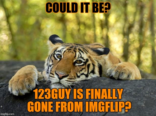 This is because he said to someone he hopes they die of cancer, and a load of us, me included, reported him. | COULD IT BE? 123GUY IS FINALLY GONE FROM IMGFLIP? | image tagged in 123guy,123troll,david,gone,thank god | made w/ Imgflip meme maker