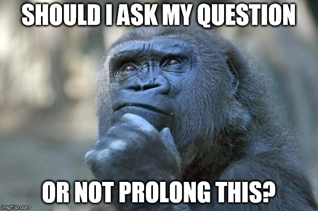 that is the question | SHOULD I ASK MY QUESTION OR NOT PROLONG THIS? | image tagged in that is the question,question | made w/ Imgflip meme maker