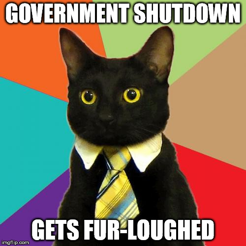 Business Cat Meme | GOVERNMENT SHUTDOWN GETS FUR-LOUGHED | image tagged in memes,business cat,government,cats,government cat | made w/ Imgflip meme maker