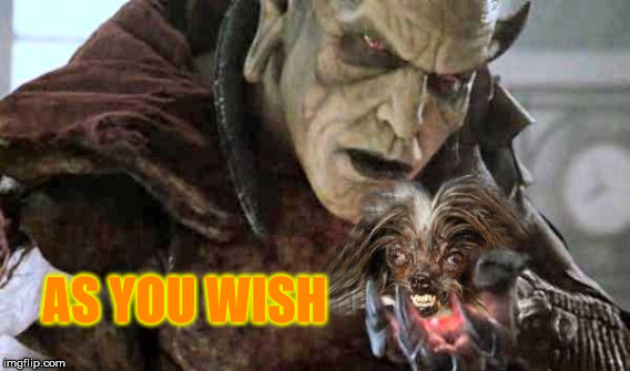 I want a puppy. | AS YOU WISH | image tagged in dogs,meme,scary,wishmaster,movie,memes | made w/ Imgflip meme maker