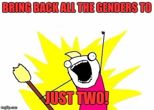 X All The Y Meme | BRING BACK ALL THE GENDERS TO JUST TWO! | image tagged in memes,x all the y | made w/ Imgflip meme maker