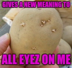 GIVES A NEW MEANING TO ALL EYEZ ON ME | made w/ Imgflip meme maker