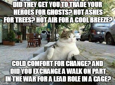 Wish You Were Here | DID THEY GET YOU TO TRADE YOUR HEROES FOR GHOSTS? HOT ASHES FOR TREES? HOT AIR FOR A COOL BREEZE? COLD COMFORT FOR CHANGE? AND DID YOU EXCHA | image tagged in cat pondering,pink floyd | made w/ Imgflip meme maker