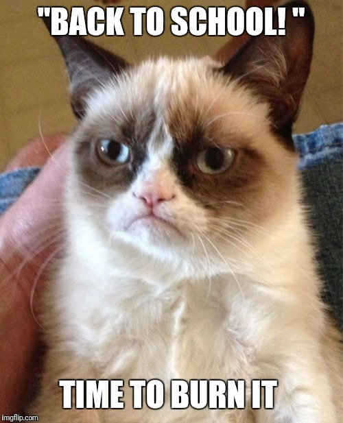 "Grumpy Cat Meme | ""BACK TO SCHOOL! "" TIME TO BURN IT 