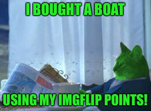 I Should Buy a Boat RayCat | I BOUGHT A BOAT USING MY IMGFLIP POINTS! | image tagged in i should buy a boat raycat | made w/ Imgflip meme maker
