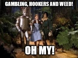 GAMBLING, HOOKERS AND WEED! OH MY! | image tagged in wizard of oz | made w/ Imgflip meme maker