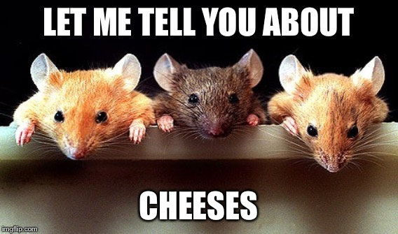 LET ME TELL YOU ABOUT CHEESES | made w/ Imgflip meme maker
